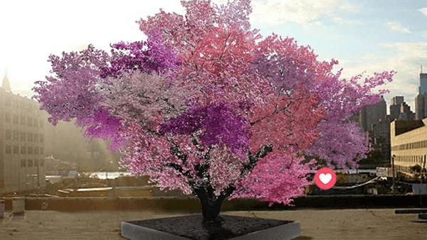 arbrol 40 frutas El maravilloso árbol donde crecen más de 40 tipos de frutas