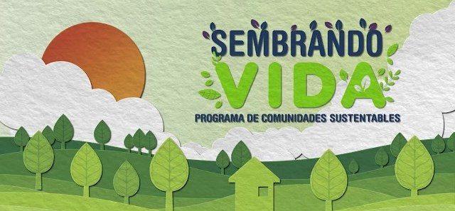 suscribirse Sembrando vida Programa Sembrando vida: plantar árboles por 5 mil pesos
